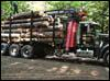 log trucking, trucking, logs, southern New Hampshire, New Hampshire, NH, Southern Vermont, Southern VT, VT,  certified trucker, Russell Logging, W. E. Russell Logging